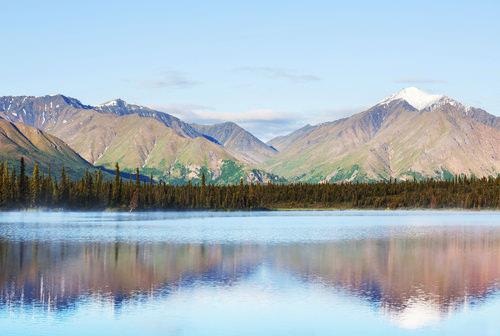 Alaskan Tundra