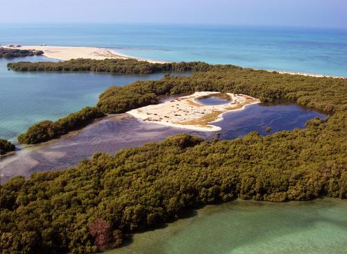 Bu Tinah Island, Abu Dhabi