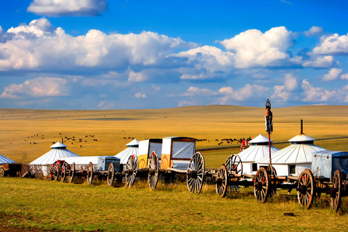 Mongolian nomadic local living