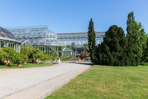 Botanical Garden Brazil