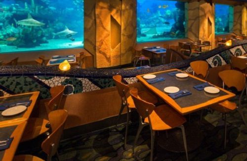 Coral Reef Restaurant at Epcot Center's Future World