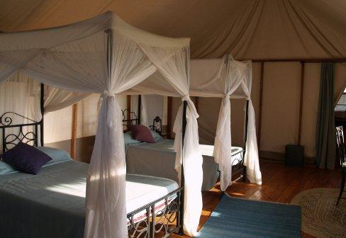 Four Seasons Safari Lodge Serengeti Tanzania
