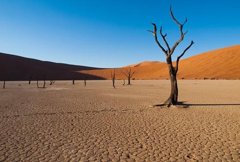 Sossusvlei Namib Desert National Park Namibia