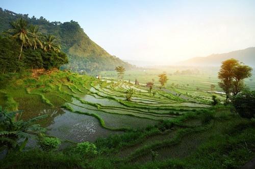 Weather patterns to Visit Bali