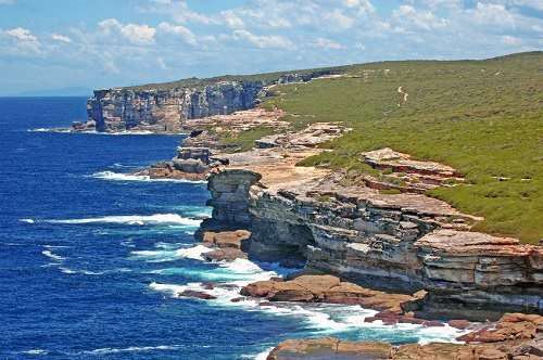 Get Your Nature on at Royal National Park