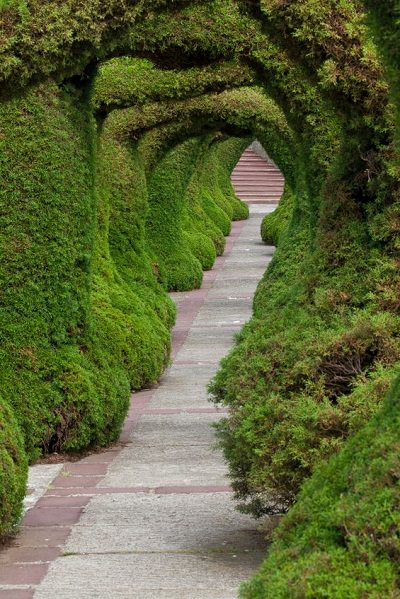 Topiary Tunnel, Zarcero, Costa Rica