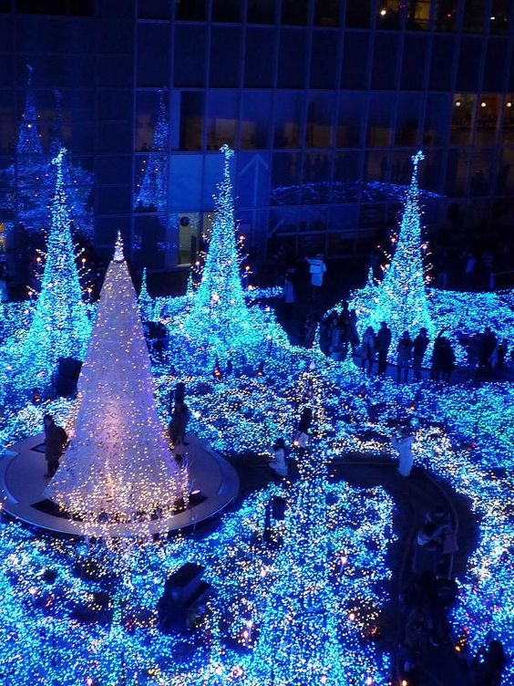 Here Is Why You Should Spend This Christmas in Japan