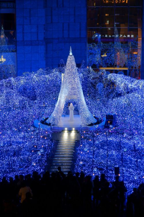 why you should spend this christmas in japan
