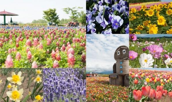 Shikisai no Oka Garden